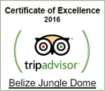 certificate-of-exellence-2016