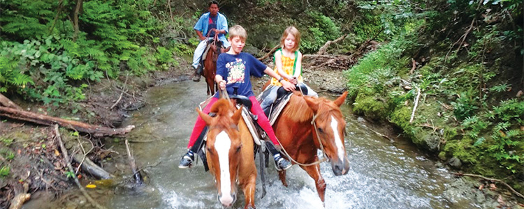 Belize Tours And Day Trips Horseback Riding Adventure - Belize trips