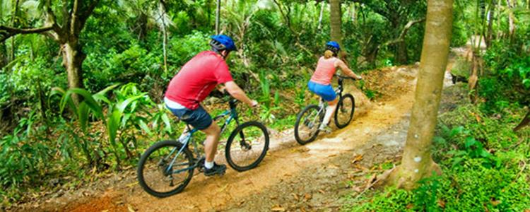 banner-biking